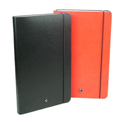 CARTESIO-notebooks